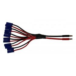 Quantum EC5 Parallel Charge lead 6 output Q-CL-0006