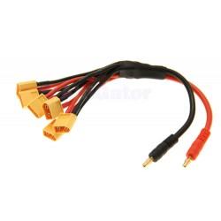 Quantum XT60 Parallel Charge lead 6 output Q-CL-0005