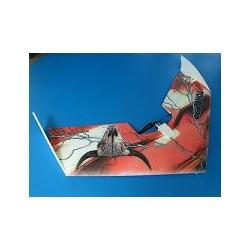 Telink TORO 900 paket med borstlös motor BRUTAL!